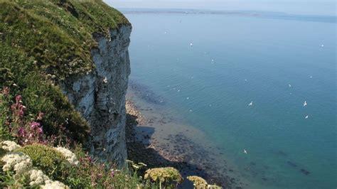 bempton cliffs nature reserve east riding  yorkshire