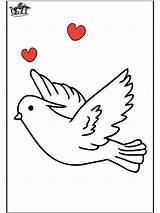 Pigeon Coloring Pages Pigeons Printable Dessin Preschool Voyageur Coloriage Imprimer Animals Animal sketch template