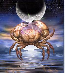 Zodiac Sign | Photographs and Images