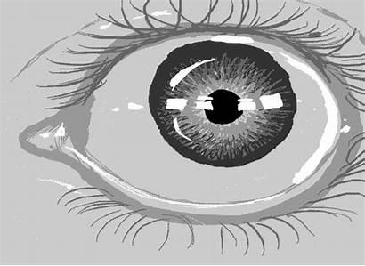Eyes Eye Drawing Pleased Draft Turned Way