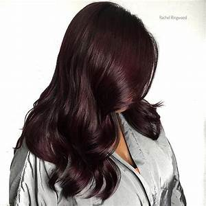 Top 100 plum hair color photos dark plum balayage with a for Hair color letters