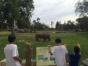 Fresno Chaffee Zoo Opens New African Adventure | Valley ...