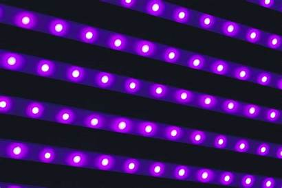 Purple Led Lighting Strips Lamps Flare