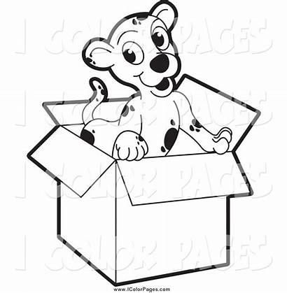 Coloring Clipart Puppy Box Pages Cardboard 3d