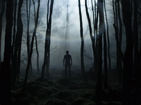 great forest horror films bfi