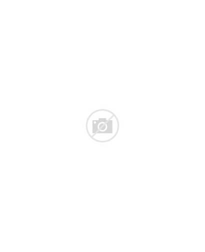 Foulois Benjamin Military General Air Lt History