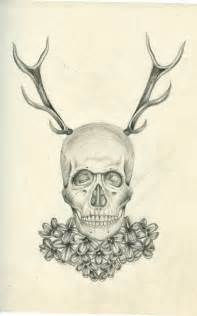 Deer Skull Drawings