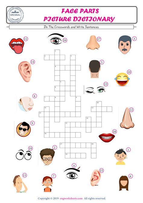 face parts esl printable english vocabulary worksheets