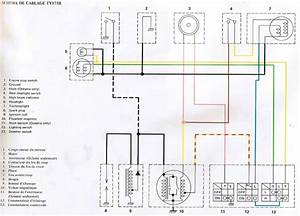 Scag Tiger Cub Wiring Diagram