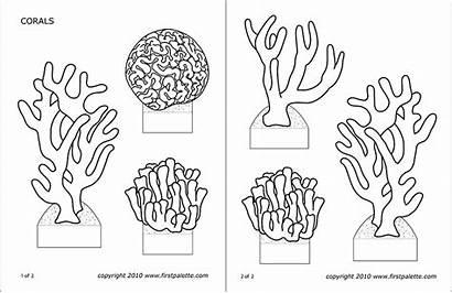 Corals Printable Coral Ocean Reef Templates Craft