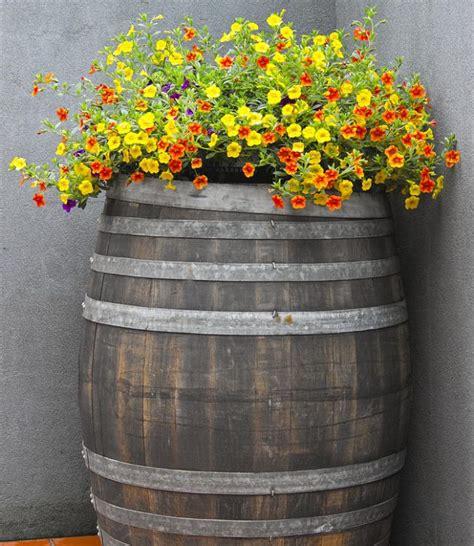 impressive diy wine barrel planters