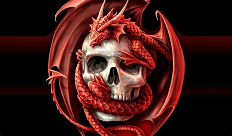 fondo pantalla calavera  dragon