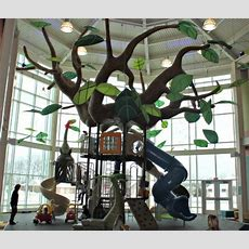 5 Things To Know About The Treehouse At Plainfield