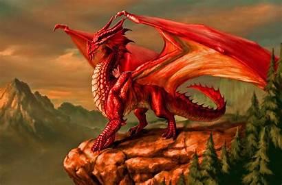 Dragon Wallpapers Dragons Fantasy Dungeons Rpg Metallic