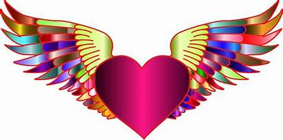 Wings Heart Clipart Flying Drawing Symmetry Transparent