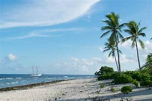 SEA Semester | Study Abroad with SEA Semester: Ocean ...  Sea
