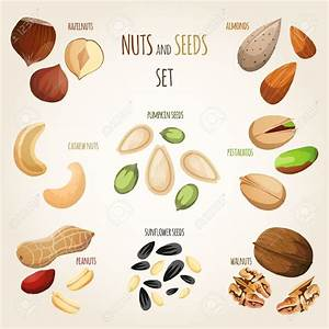 Seed mix clipart 20 free Cliparts Download images on