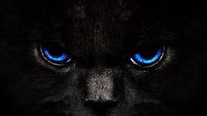 Blue, Eyes