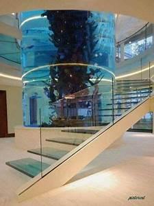 12 Aquariums Incroyables  U00e0 Avoir Chez Soi
