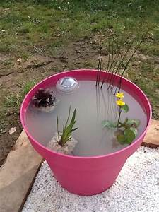 Grand Pot Plante : un mini jardin aquatique un grand pot de fleur aux ~ Premium-room.com Idées de Décoration