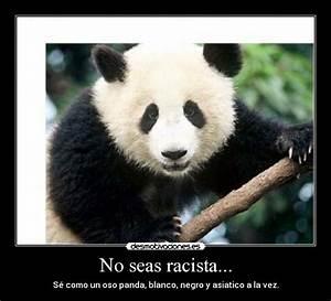 Racist Panda Meme
