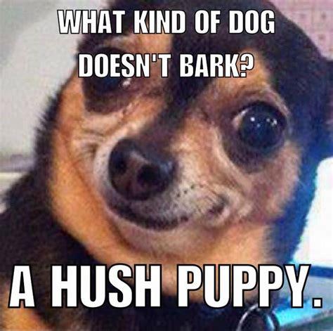 funny dog puns