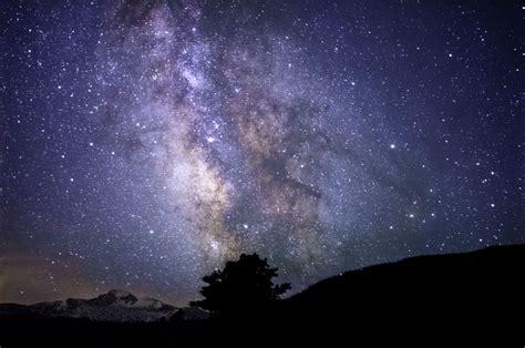 Images Gratuites Arbre La Nature Silhouette Ciel