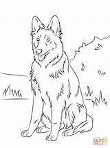 Coloring Shepherd German Pages Puppy Sitting sketch template