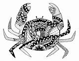 Crab Redbubble sketch template
