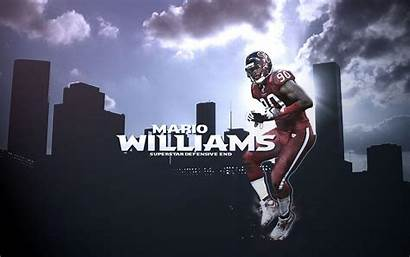 Texans Wallpapers Houston Williams Widescreen Screensavers Dolphins