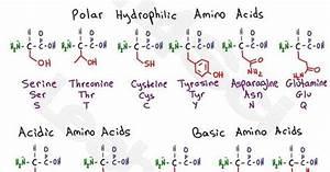 Mcat Amino Acid Chart