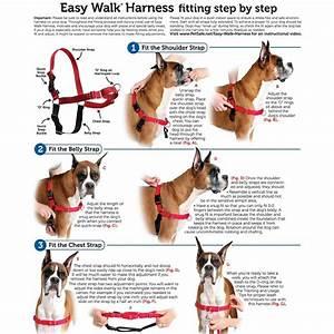 PetSafe Easy Walk Harness - Black/Silver (Medium/Large)