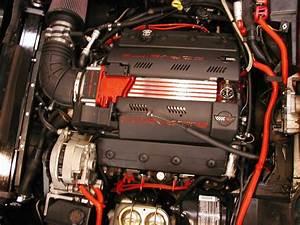 Fuel Rail Covers On C4 - Corvetteforum