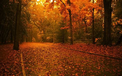 Autumn Wallpapers Widescreen by Fall Backgrounds Autumn Widescreen Wallpaper Thumb