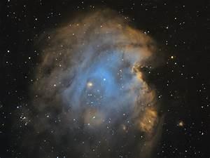 Jeffrey Jongmans | Astrophotography | NGC2175 Monkey Head ...