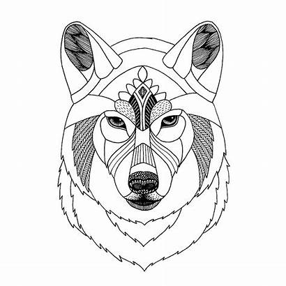 Zentangle Wolf Template Sketch Animal Coloring Templates