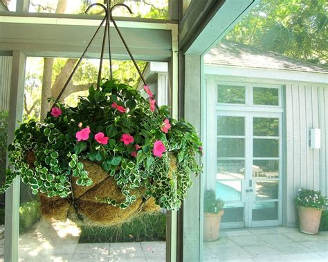 105 best images about hanging basket ideas at the barn