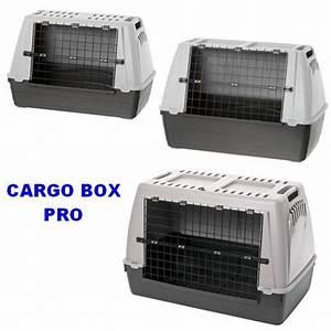Cage Transport Chien Voiture : cage de transport cargo box pro pour chiens ou chats et animaux morin accessoires pourle ~ Medecine-chirurgie-esthetiques.com Avis de Voitures