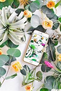 #ProperPrintables  Botanical Wallpaper Download