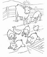 Coloring Farm Pig Pages Animals Colour Farmer Animal Crew Printable Cute Farmers Barn Cut Overalls Template Popular Getcoloringpages Tractor Coloringhome sketch template