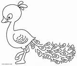 Peacock Coloring Pages Printable Drawing Cool2bkids Getdrawings sketch template