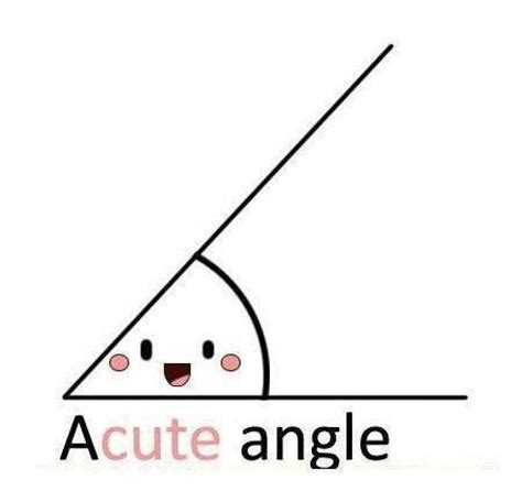 英數漫遊 ─ Acute Angle、obtuse Angle(銳角、鈍角) 魔數學堂