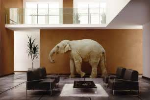 Elephant In The Living Room Definition by Feng Shui Tips For Luck And Wealth 7 Ways To Use Elephant