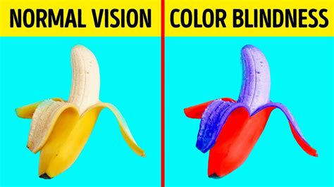 what colors do colorblind see how color blind see the world