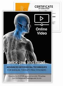Advanced Myofascial Techniques  Neck  Jaw And Head  Online