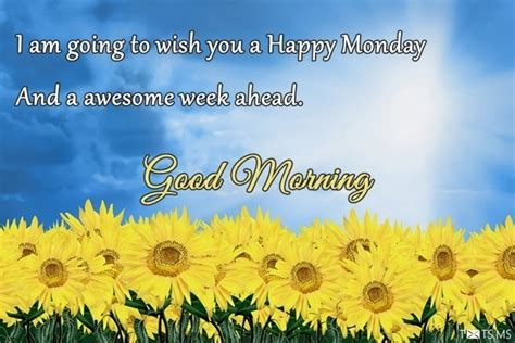 happy monday wishes messages quotes images  facebook whatsapp picture sms txtsms