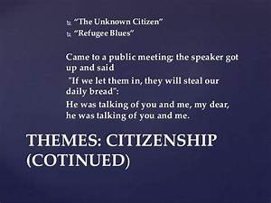 the unknown citizen analysis