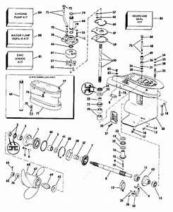 Wiring Diagram 1989 Evinrude 25