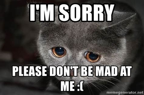 Dont Be Mad Meme - i m sorry please don t be mad at me sadcat meme generator