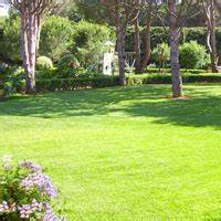 Ent La Farlede : mediteo paysagiste var pelouse gazon synth tique ~ Melissatoandfro.com Idées de Décoration